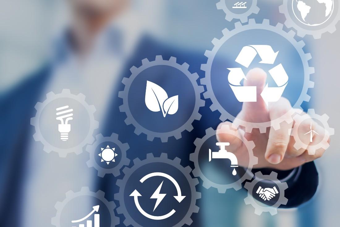Como a empresa pode se tornar eco friendly?